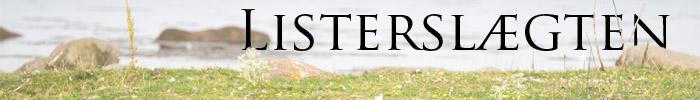 listerslakten-banner