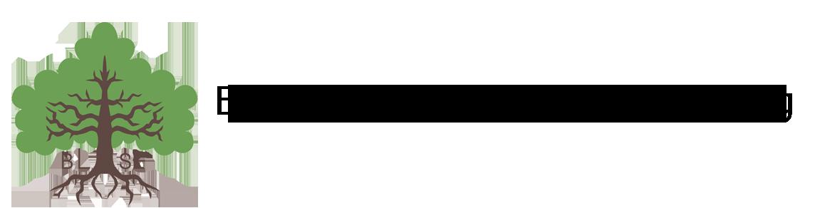 Blekinge släktforskarförening